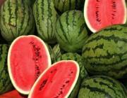 في الصيف يصبح لـ «البطيخ» أهمية كبرى.. تعرّف على فوائده