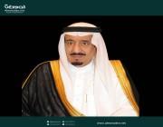 بأمر الملك.. حامد بن محمد بن حامد فايز نائبًا لوزير الثقافة