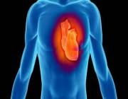دراسة: مكملات الفيتامينات لا تفيد القلب
