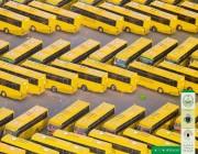 حافلات ضيوف الرحمن ترسم «لوحة فنية» في الحج (صور)