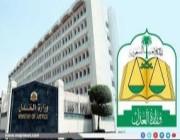 التعديلات الجديدة في نظام القضاء العام ونظام التنفيذ