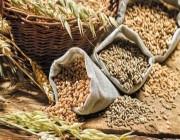 تناول الحبوب الكاملة يقي من السكري