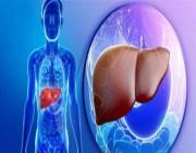 5 أطعمة تساهم في الوقاية من الإصابة بأمراض الكبد