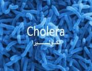 بعد تسجيل حالة إصابة في المملكة.. أبرز طرق كشف ومعالجة الكوليرا