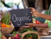 الأغذية العضوية هل هي أفضل للصحة حقاً؟