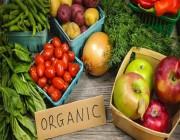 دراسة: الأغذية العضوية تقلل خطر الإصابة بالسرطان
