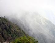 بالصور.. ضباب الجبل الأسود يُعانق قمم الجبال في مشهد رائع بالريث