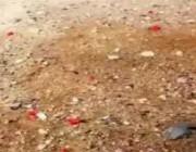 بالفيديو: خبير طقس يوضح سر ظهور بنت المطر في المملكة.. وهذا موعد ظهورها!