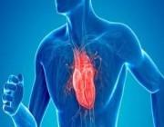 7 أسباب لضعف عضلة القلب.. الأخيرة شديدة الخطورة