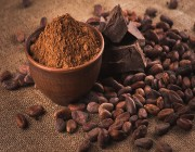 دراسة تنصح بتناول الكاكاو .. يحتوي على فيتامين D2 للوقاية من الأمراض